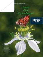 all about jinten.pdf