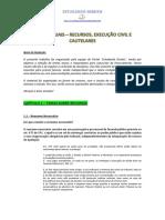 Apostila - Recursos, Execucao e Cautelares - PGE-PGM 2015
