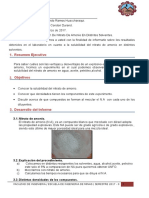 2experimento Nitrato de Amonio