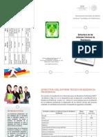 Triptico Estructura del Reporte Tecnico de RP.pdf
