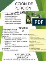 Exposición Sobre Accion de Peticion de Herencia