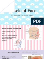 anatomy  face muscle