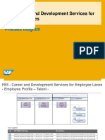 Career and Development Services for - Process_Overview_EN_XX