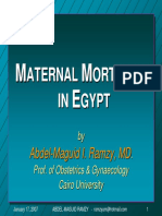 Maternal Mortality Egypt Ramzy 2007