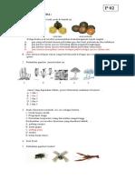 10062_kunci Paket Utama Bio213