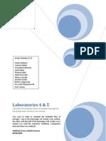 CFX Laboratories 4 and 5 (2nd Version)- Simon Amboise and Vianney Kieken