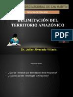 DELIMITACIÓN-DEL-TERRITORIO-AMAZÓNICO.pptx