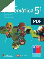 5 matemática 2017