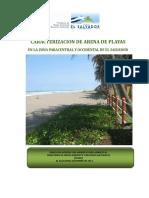 arenasParacentral.pdf