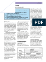 Toddler_Development.pdf