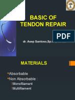 Tendon Repair Asep