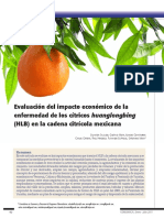evaluacion del impacto economico hlb