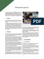 Pomerania (Perro)