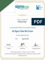 PDU Six Sigma Yellow Belt 2016-09-28-12-27-33 (1).pdf