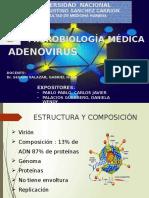 24. Adenovirus