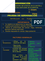 PLANTA- CATEGORIAS- GERMINACION.pptx
