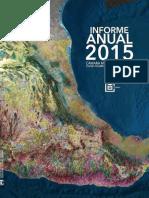 informe de mineria 2015