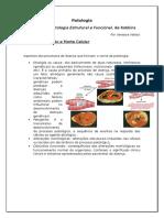 Patologia - Capítulo 1