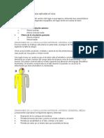 Semiología Neurológica Aplicada Al Ictus