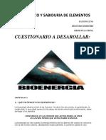 Bioenergia 2ab.pdf