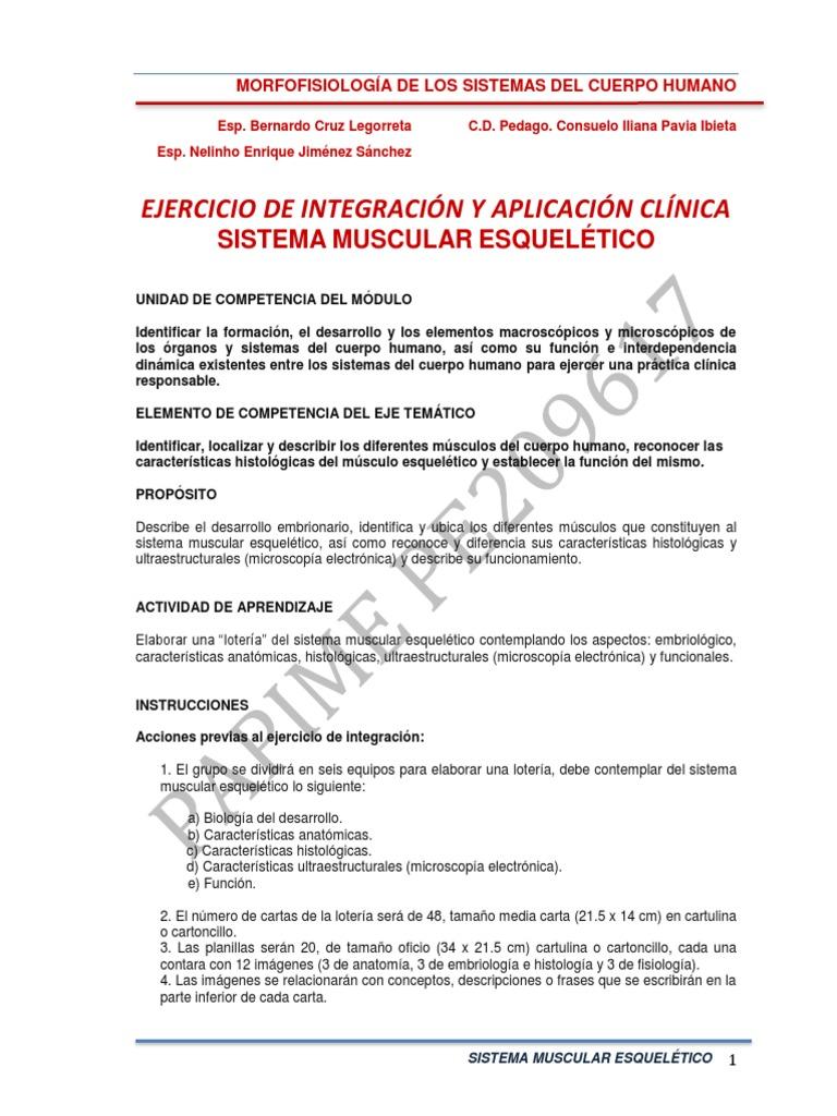 Ejercicio de Integración 4 Sistema Muscular esquelético