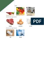 Alimento de Origen Vegetal