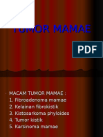 117816421-Tumor-Mamae.ppt
