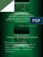 PUBLICO[1]