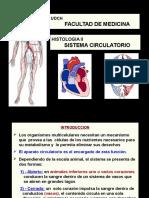 Sistema Circulatorio C-V