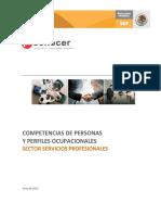 Competencias de Personas y Perfiles Coupacionales Sector Servicios Profesionales