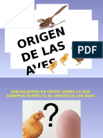 Origen de Las Aves