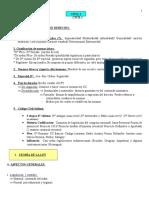 Resumen Civil Ley y Personas