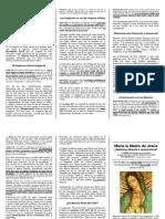 maria_v2r.pdf