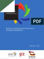 consultor energetico.pdf