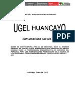 Bases Corregido 30-01 Cas