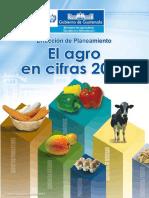 El Agro en Cifras Small 2013