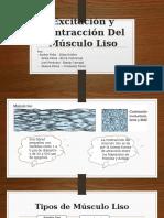 Excitación y Contracción Del Músculo Liso.