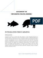 Aquaculture- Integrated Pig and Fish farming
