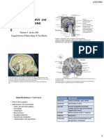 6 - Hypothalamus & Pituitary Gland