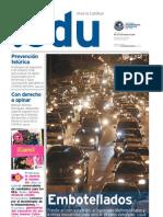 PuntoEdu Año 6, número 175 (2010)