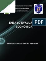 Evaluacion Economica Ensayo
