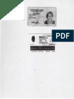 img319.pdf