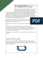 SARGENTOS O GATOS.pdf