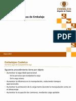 elementos_y_formas_de_embalaje.pdf