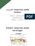 Sistem Respirasi Pada Hewan