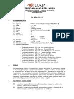SILABUS ADULTO II.pdf