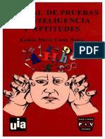 Kathia Maria Costa Neiva- Manual de Pruebas de Inteligencia y Aptitudes.pdf