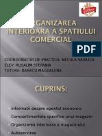 Organizarea Interioara a Spatiului Comercial