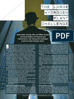 FINAL Large H2 Plt Challenge