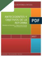Antecedentes y Objetivos de La Reforma